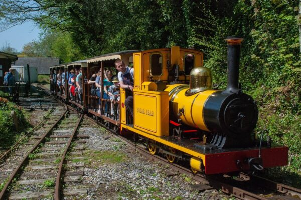 An image of the narrow gauge railway at Amberley Museum