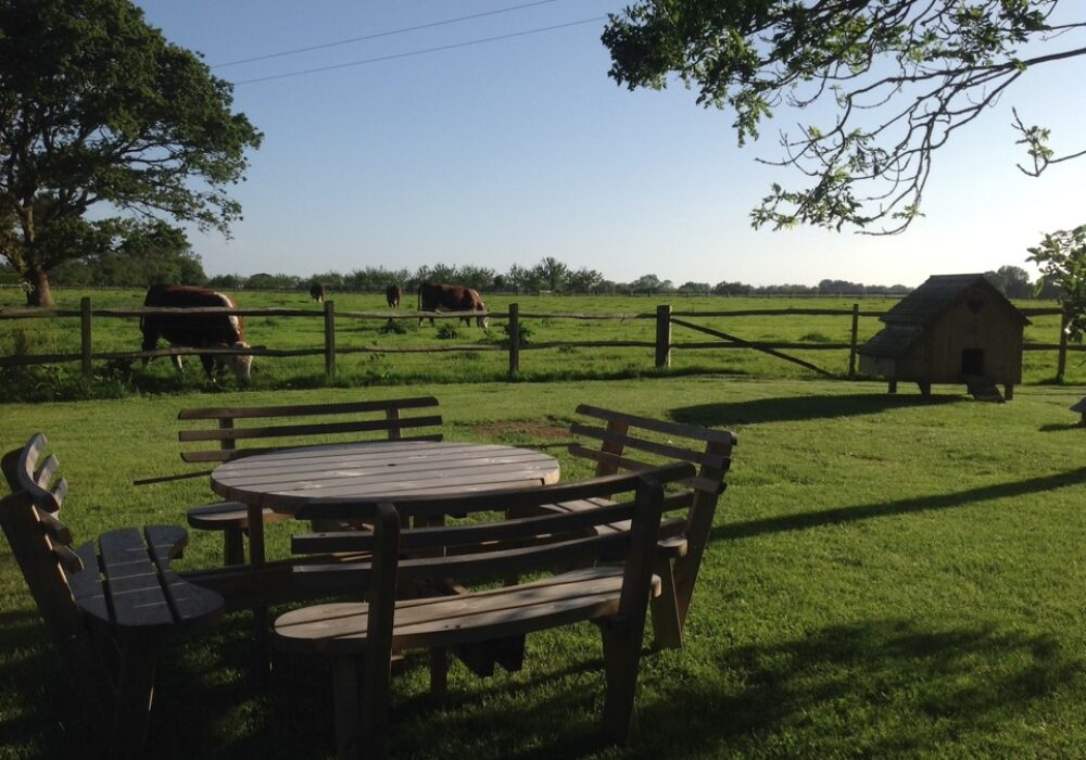The garden at Apple Barn self catering holiday accommodation