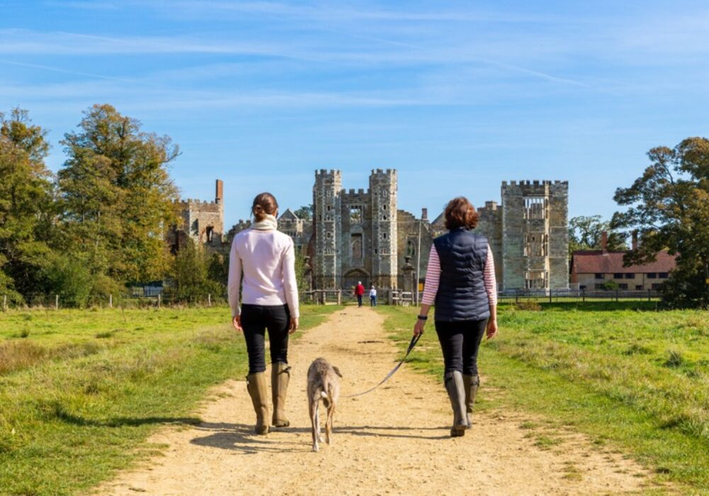 An image of people and a dog walking toward the Cowdray Ruins in Midhurst West Sussex, part of the Cowdray Estate
