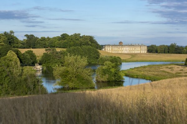 A view of The National Trust's Petworth Park