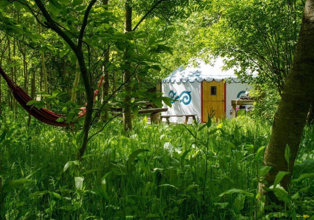 An image showing a glamping tent in woodland