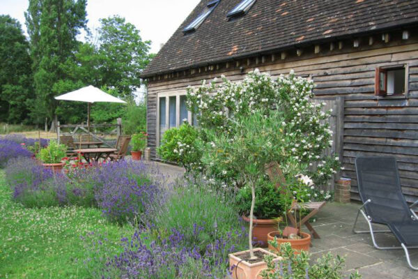 Garden and exterior at Martins Cottages