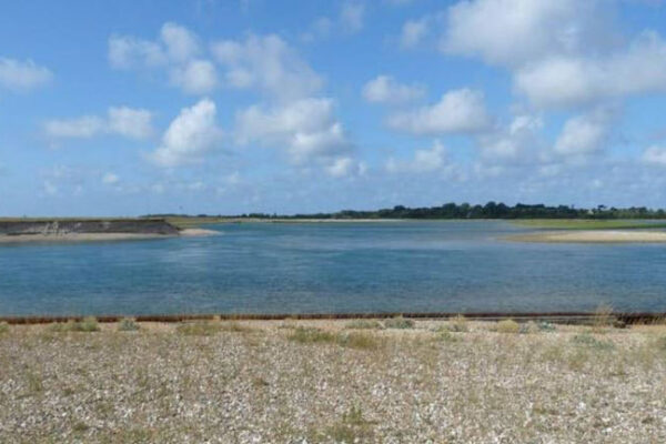 Pagham Harbour Walks- Church Norton