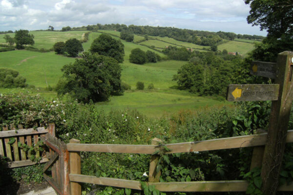 Petworth and Shimmings Valley