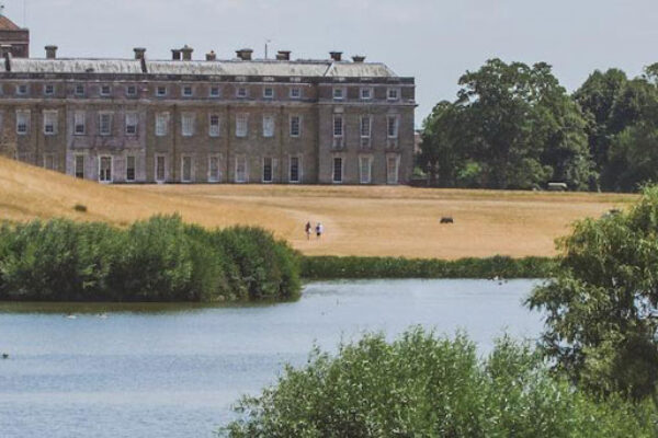 Petworth House & Park Ancient Trees Walk