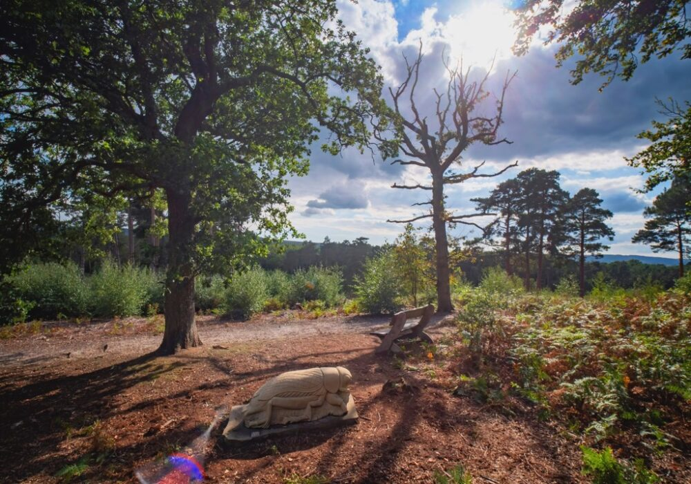 An image of a sculpture - part of the heathlands sculpture trail in South Downs National Park