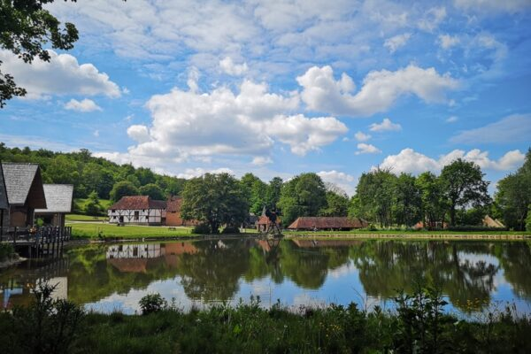 A view of the pond at Weald & Downland Living Museum
