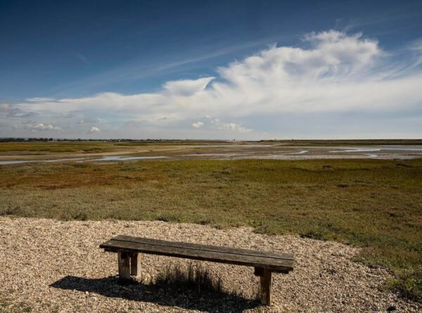 A view of Pagham Harbour Nature Reserve near Selsey, West Sussex
