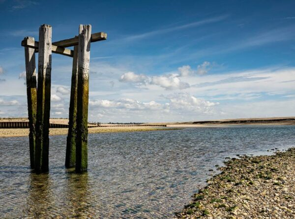 Pagham Harbour Nature Reserve near Selsey, West Sussex