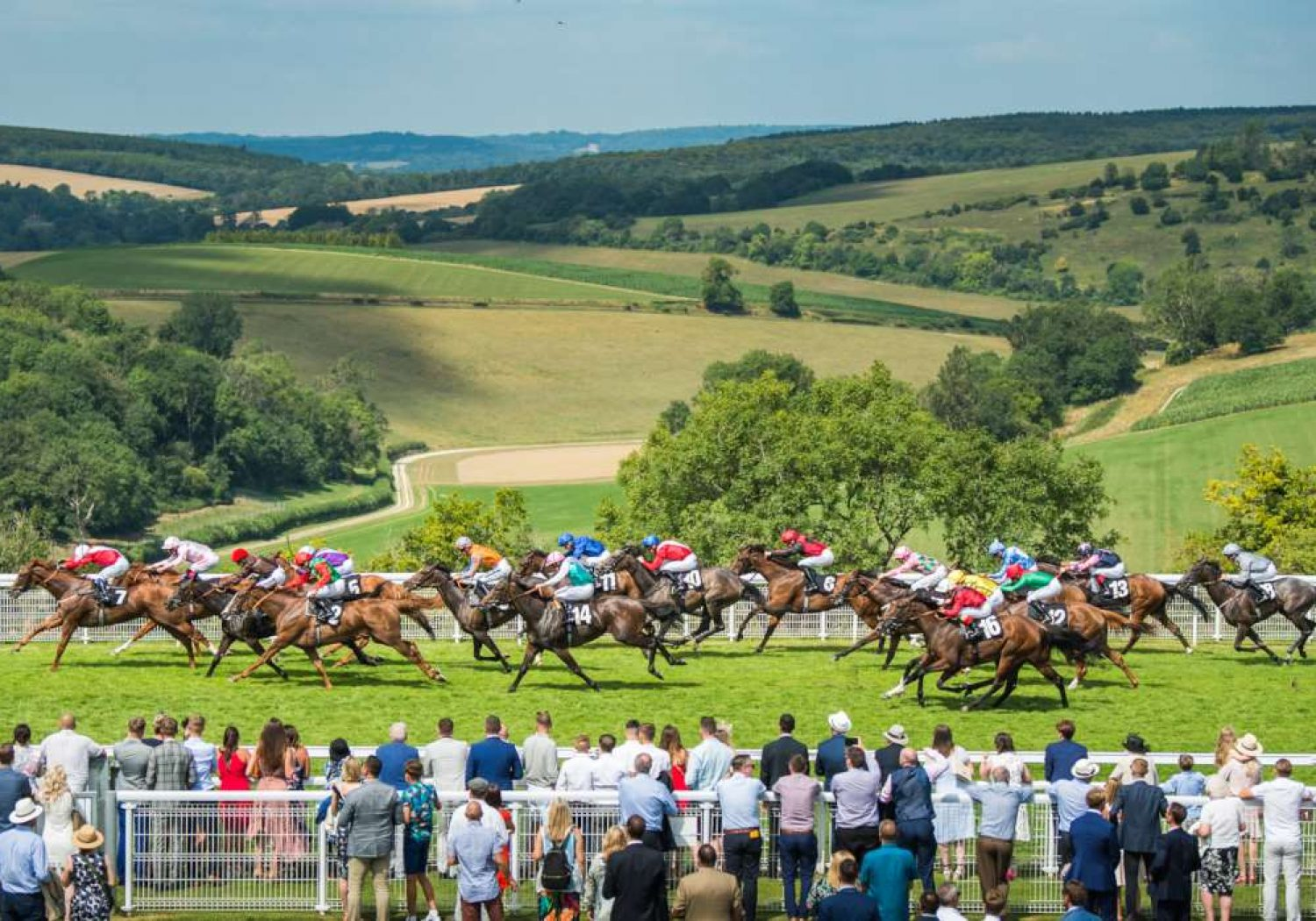 an image showing Goodwood racecourse with horses racing