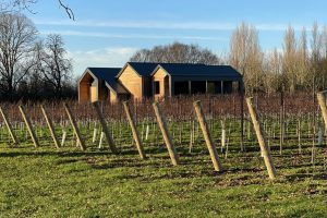 An image showing an accommodation lodge at Ashling Park Vineyard, West Sussex