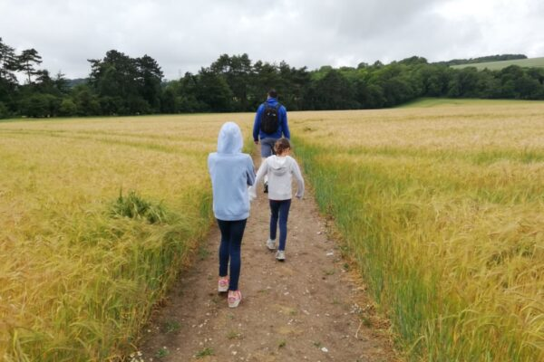 A picture of a family walking