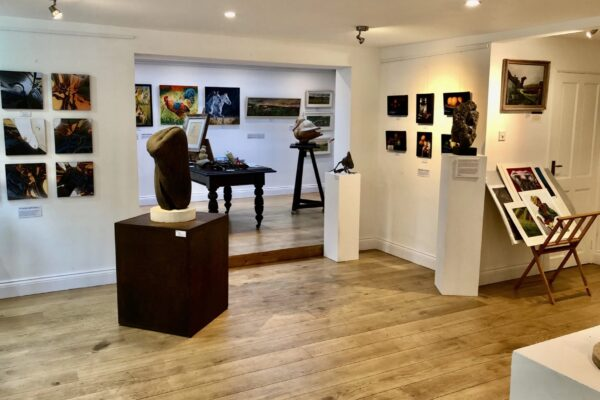 The Fittleworth Gallery